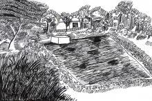 Pond on the hill   Nehil Sabaster   Class VI-B   VVR